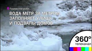В Пушкинском районе жители поселка Лесной вторые сутки сражаются с потопом
