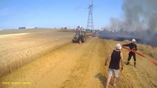Pożar Rżyska - zagrożone zboże na pniu!