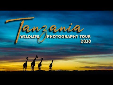 Tanzania 2018 - Photography Tour