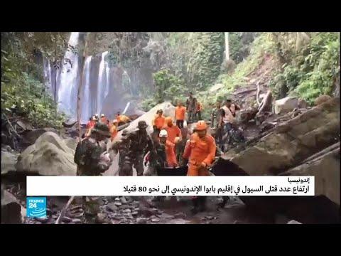 إندونيسيا: مقتل العشرات في إقليم بابوا إثر فيضانات وانزلاقات للتربة  - نشر قبل 60 دقيقة