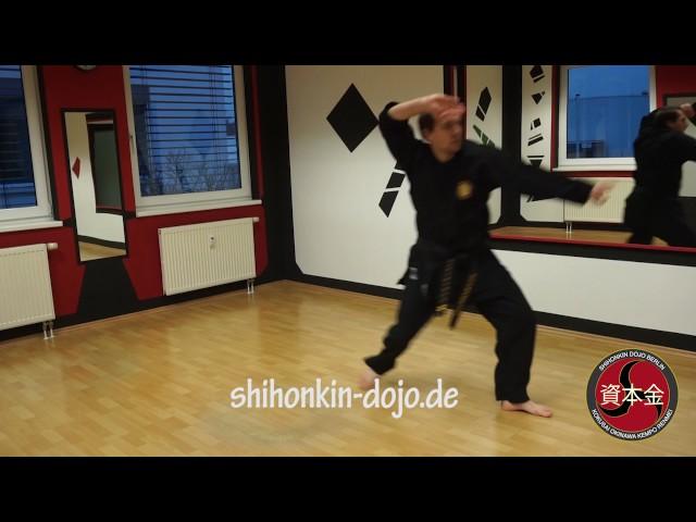 Sensei Dominik Lübben - Kata Shin-Tai-Sho