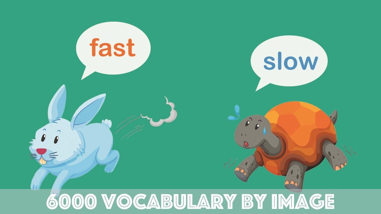 6000 từ vựng tiếng anh qua hình ảnh phần 2, Learn 6000 english vocabulary by image part 2