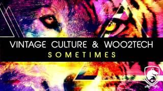 Vintage Culture & WOO2TECH - Sometimes (Radio Edit)
