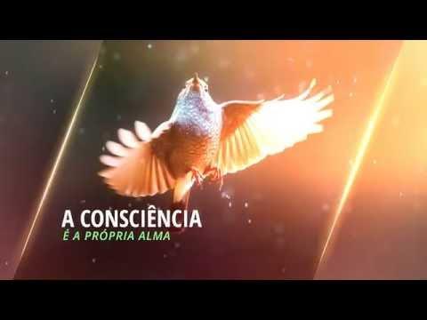 """Meu Livro: """"O Voo da Águia – Caminho para o Despertar"""""""