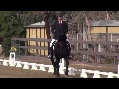 Lark of Honor Bright & Bryan Ludens - Intro Test B - PGF Dressage Schooling Show January 2015