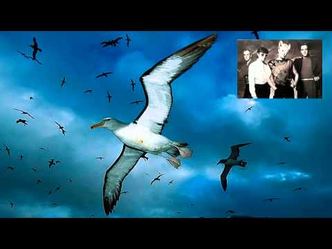A Flock Of Seagulls - The More You Live, The More You Love (7  Remix)