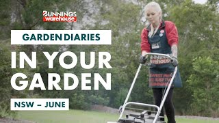 Gardening in June | New South Wales | Bunnings Garden Diary