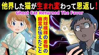 【Japanese Manga Drama】Ghost Cute Cat Returned The Favor