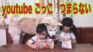 休日で孫達も暇、秋田犬、ジャーマンシェパード犬のマックも暇 何か遊ん...