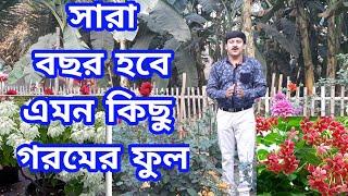 গ্রীষ্মের বাগানে টবে কোন ফুলগুলো বসানো যাবে | গ্রীষ্মের বাগান ২০২১ | My Garden Raju Paul