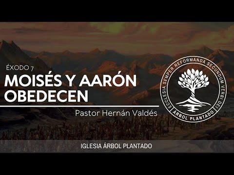 """Éxodo Vídeo 10 - """"Moisés Y Aarón Obedecen"""""""