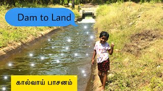 Thirumoorthi malai dam water irrigation | திருமூர்த்தி அணை நீர்பாசனம் | It's D here