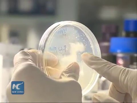 China starts precision medicine research