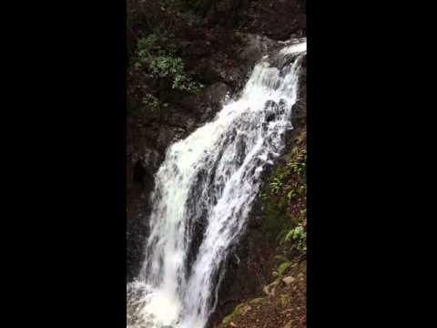 Upper Falls at Uvas Canyon
