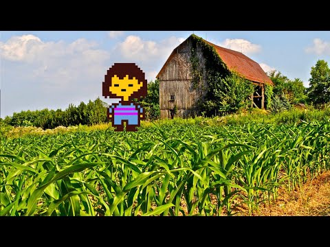 Rain makes corn...