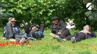 Астраханские бомжи-аристократы обсуждают Димона-тапка