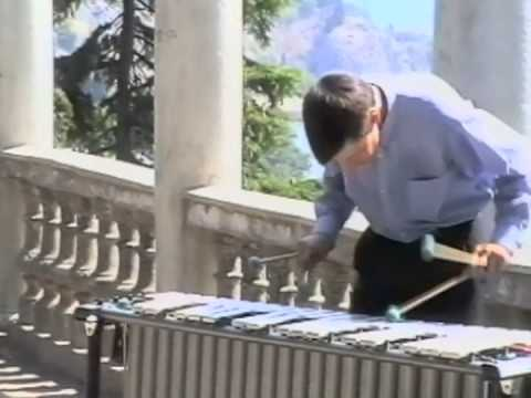 Classical music on Vibraphone. A.Chizhik Вибрафон 1996.