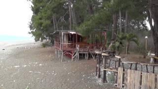 Абхазия. Пляж в Пицунде(, 2015-04-09T13:02:43.000Z)