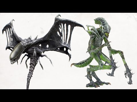 TOP 10 Rare And Exotic XENOMORPH TYPES - YouTube