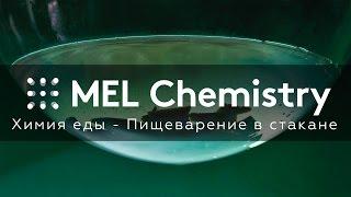 Химия еды - Пищеварение в стакане