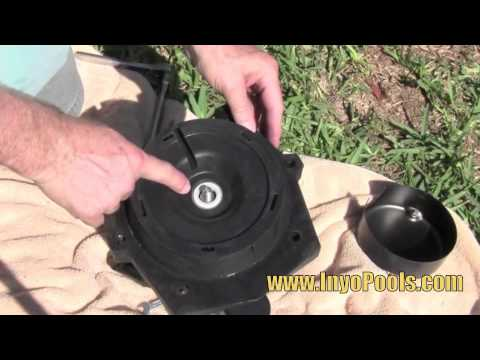 hqdefault how to replace a pool pump motor youtube emerson 1081 pool motor wiring diagram at alyssarenee.co