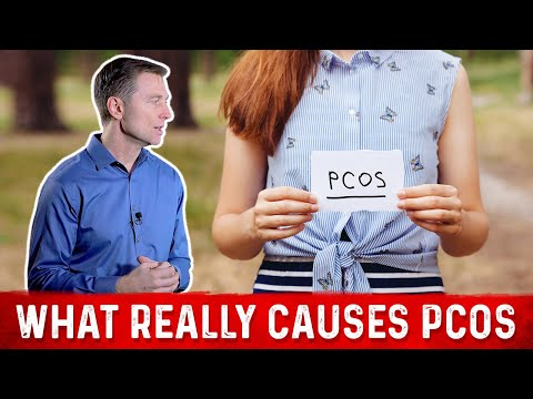 what-really-causes-pcos-(polycystic-ovarian-syndrome)?