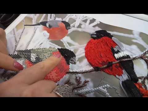 Вышивка попугаев лентами