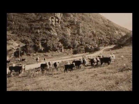 William Allen - Ken-Caryl Ranch