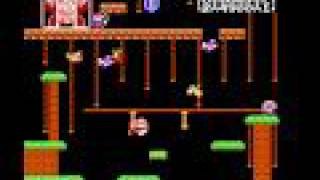 NES Longplay [049] Donkey Kong Jr
