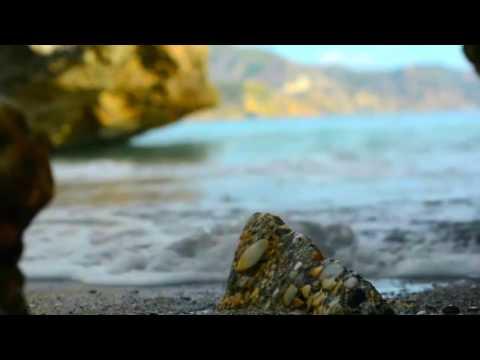 Sia - Elastic Heart (Dub Performance Remix)