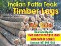 indian teak timber logs