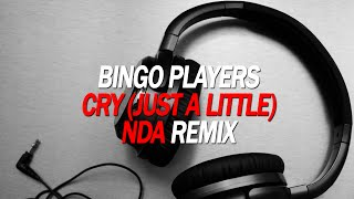 Bingo Players - Cry (Just a Little) (NDA remix)