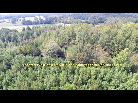 Pioneer Auction and Realty llc Auction 42 ac. Hunting Land