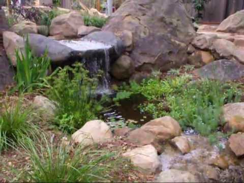 A small garden pond youtube for Tiny garden ponds
