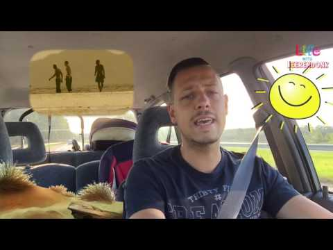 #23 Karaoke in de auto   PETER ANDRE MYSTERIOUS GIRL