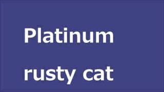 Platinum rusty cat サビイロネコ 検索動画 29