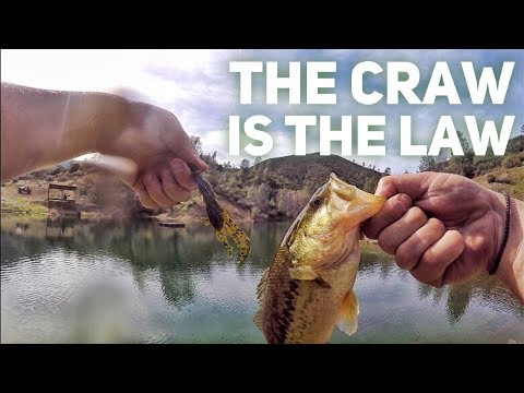 Summer Bass Fishing - Red Bluff CA