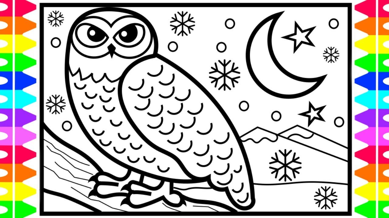 how to draw a snowy owl step by step arctic animals coloring pages