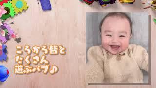 【アレク&のんちゃん】おちびーぬ0歳〜1歳のまとめ動画