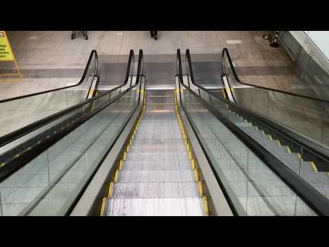 Walk Route from Sydney International Airport to Airport Link Train