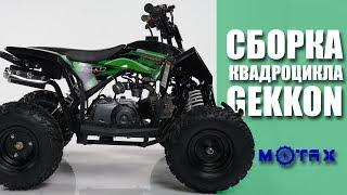 Детский квадроцикл Motax GEKKON | Сборка квадроцикла