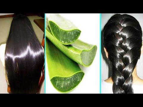 aloe vera para cabello maltratado