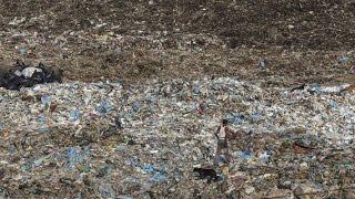 The Innovative Way India's Handling Its Massive Trash Problem