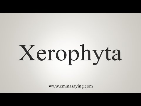 How To Say Xerophyta
