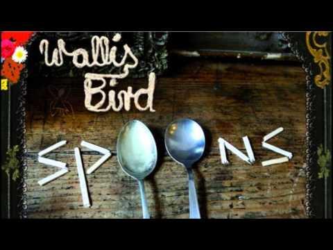 wallis bird blossoms in the street album version