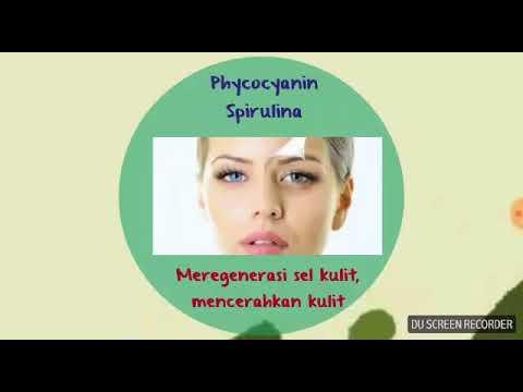 WA 0813 9037 7051 - Neoalgae Spirulina untuk Semua Masalah Kulit Wajah Anda
