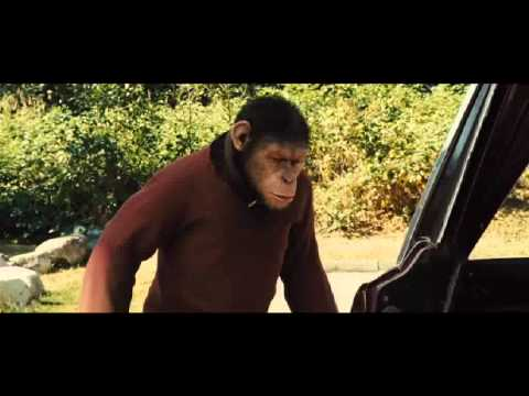Rise of the planet of the apes   What i've done