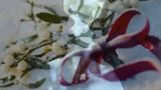 Deneuve & Sarandon Lesbian Kiss Christmas Video