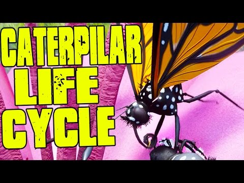 SURVIVE AS A CATERPILLAR TILL REACHING BUTTERFLY STAGE! - (Drunk On Nectar Gameplay)