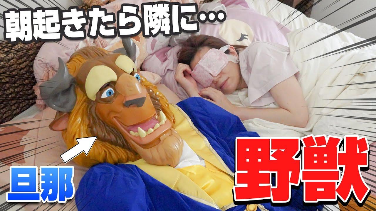 【衝撃の反応】朝起きたら隣に野獣が寝ているドッキリ【ディズニー】